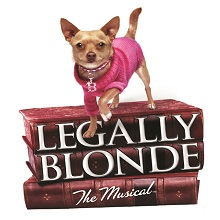"Young Actors' Theatre Presents ""Legally Blonde The Musical"""